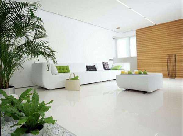 Как правильно встроить комнатные цветы и растения в интерьер квартиры