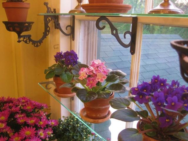 Как сделать настенные полки для цветов своими руками?