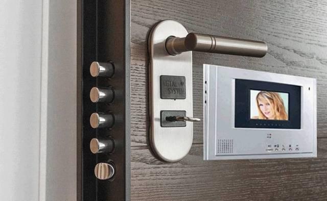 Какую дверь лучше поставить в частный дом на входную с улицы?