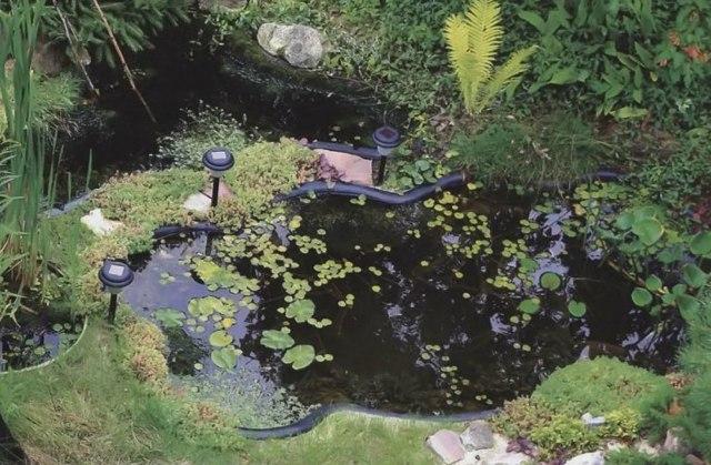 Как сделать фонтан своими руками для дачи, сада
