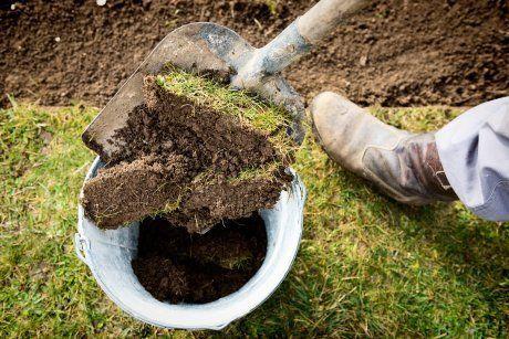Садовые дорожки: как сделать своими руками?