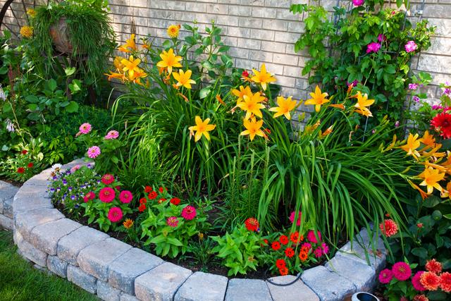 Дизайн сада своими руками для небогатых
