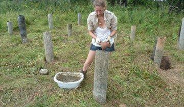 Как сделать навес из дерева своими руками