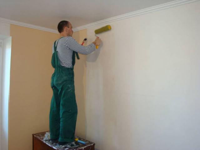 Антигрибковое средство для обработки стен и потолков: какое выбрать?