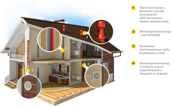 Запах канализации в частном доме: что делать, как избавиться?