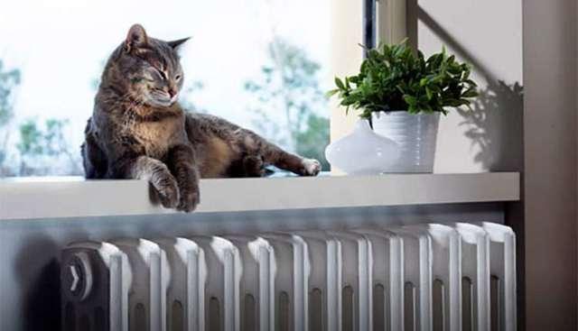 Антифриз для системы отопления загородного дома: как выбрать?