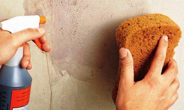 Оклейка стен обоями своими руками