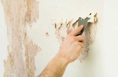 Можно ли клеить обои на краску (крашенные стены)?