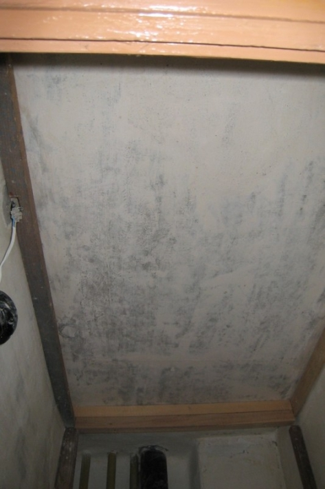 Ремонт туалета пластиковыми панелями: отделка своими руками