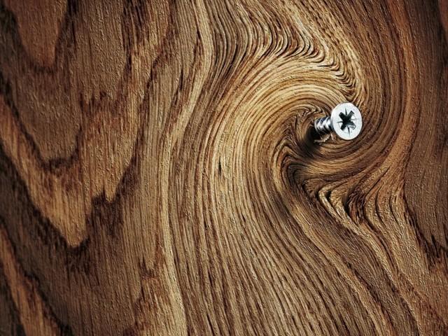 Виды саморезов по дереву: размеры, применение