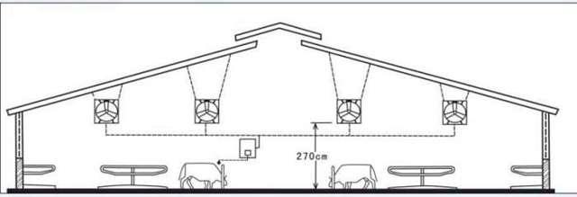Построить коровник на 10 голов своими руками: чертежи