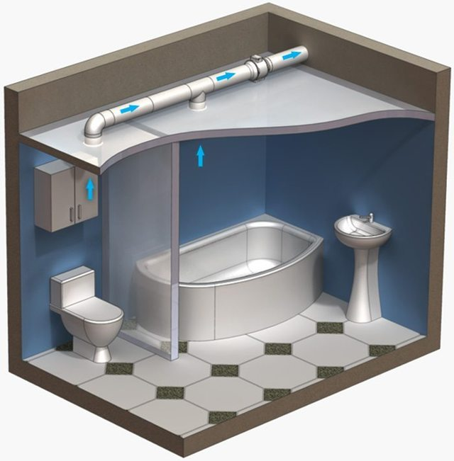Санузел в деревянном доме – сделать туалет своими руками с канализацией